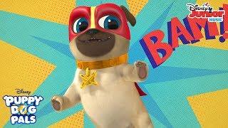 Super Pet Squad Music Video | Puppy Dog Pals | Disney Junior
