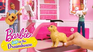 Un problema de Mascotas | Barbie LIVE! In The Dreamhouse | Barbie