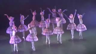 """Смотреть видео Прекрасный танец """"Розы"""" балет """"Маленький принц"""" - Театр балета «Щелкунчик» онлайн"""
