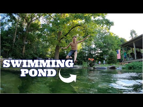 swimming-ponds-part-2-|-natural-pools-&-recreation-ponds