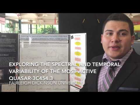 Quasar Variability