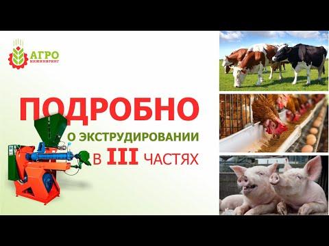 Вопрос: С чем связано подорожание кормов для сельхоз животных в 2020 году?
