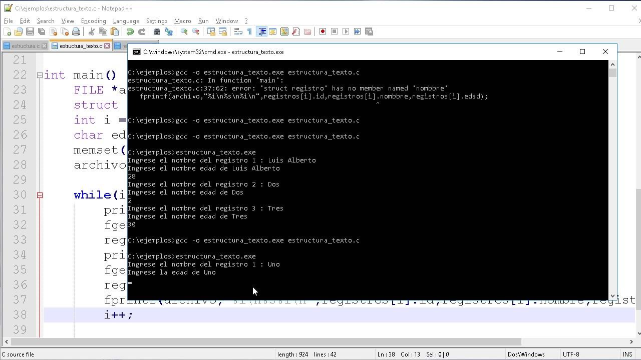 Guardar Estructura De Datos En Archivo De Texto  Dato Por