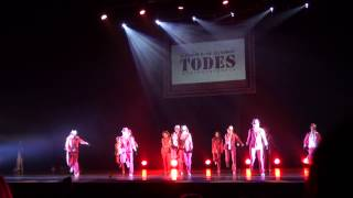 TODES DNEPR 6 group (пантера)