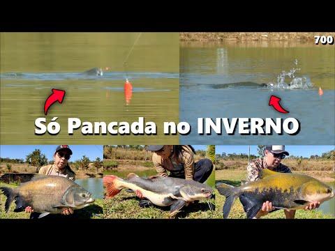 Pescaria de Inverno com muita ação na superfície no Amigos (Fishingtur na TV #700)