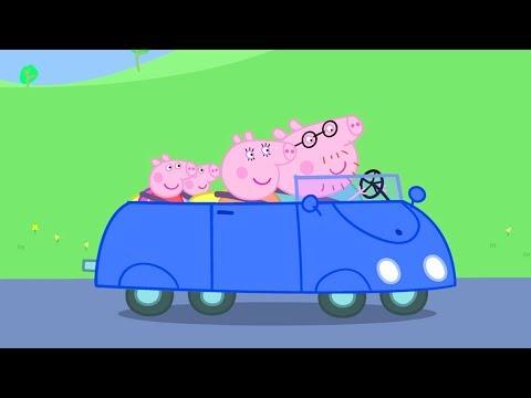 Peppa Pig Nederlands | 3 Afleveringen - Auto's