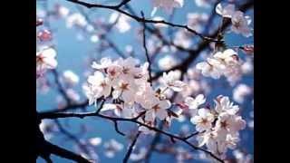 Shintaro Sakura Fujiyama Tokyo Sayonara feat Ria Resty Fauzy