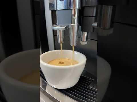CoffeeCup orgaaniliste kohvide maitsmine