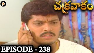 Episode 238    Chakravakam Telugu Daily Serial