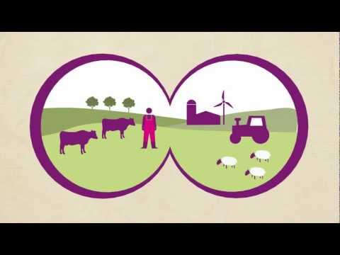 Making your milk sustainable - a vision for a sustainable dairy industry