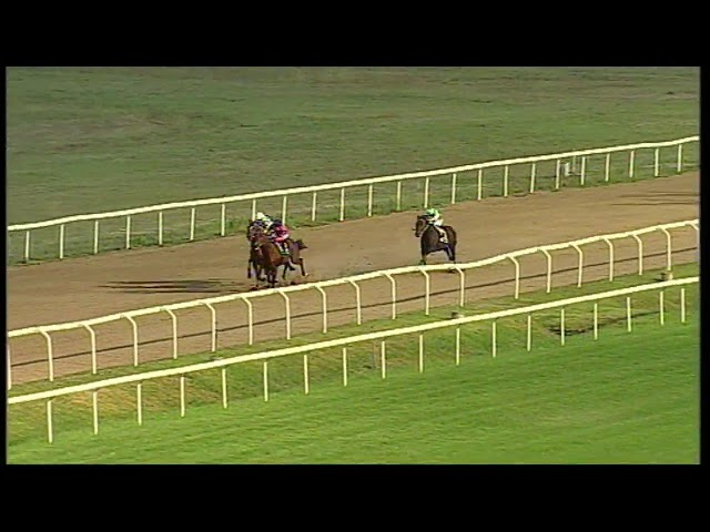 rm 20200925 08 p seabiscuit