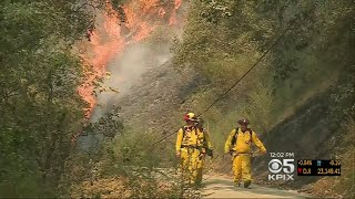 Cal Fire Crews Make Significant Progress On Bear Fire In Santa Cruz Mountains
