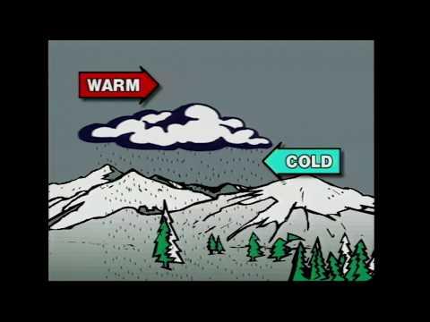 Ice Storm '98 Documentary