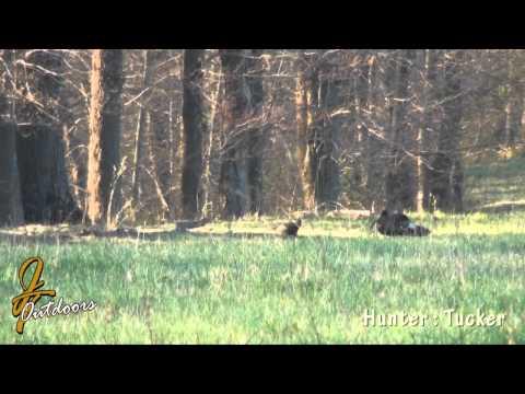 2013 PA Spring Strutter Kill