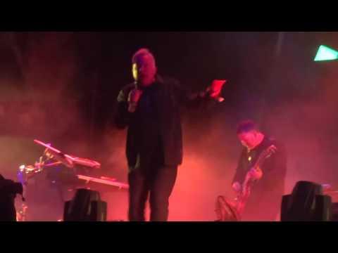 Bizarre Love Triangle Live 65