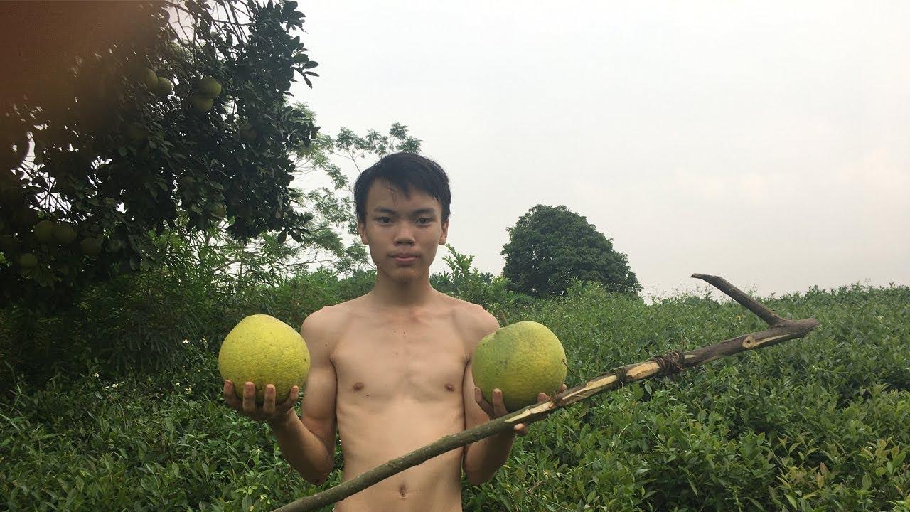 Primitive Life Skills : Technology make a Hook Pick Fruit Primitive