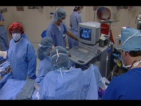 Advances In Fetal Care - Boston Children's Hospital