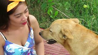 Amazing Beautiful Girl Playing With Dog Smart & Funny Dog# 28