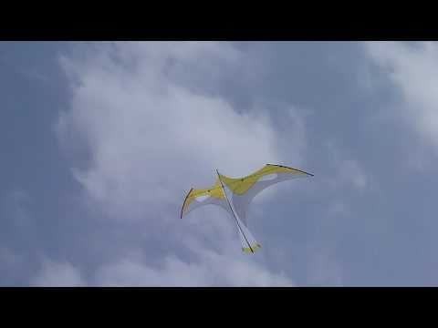Flying Wings' Yellow Laima Kite Designed by Bell Chiu