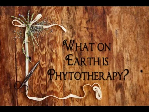 What on Earth is Phytotherapy?