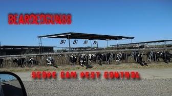 pest control on az farm.