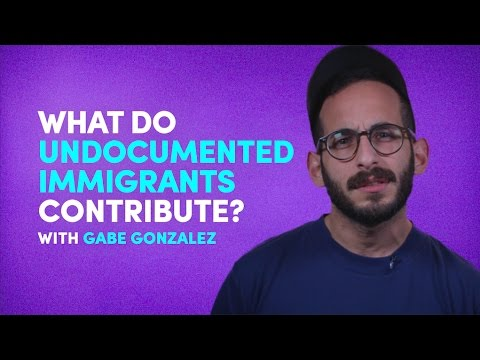 What do undocumented immigrants contribute to the economy?