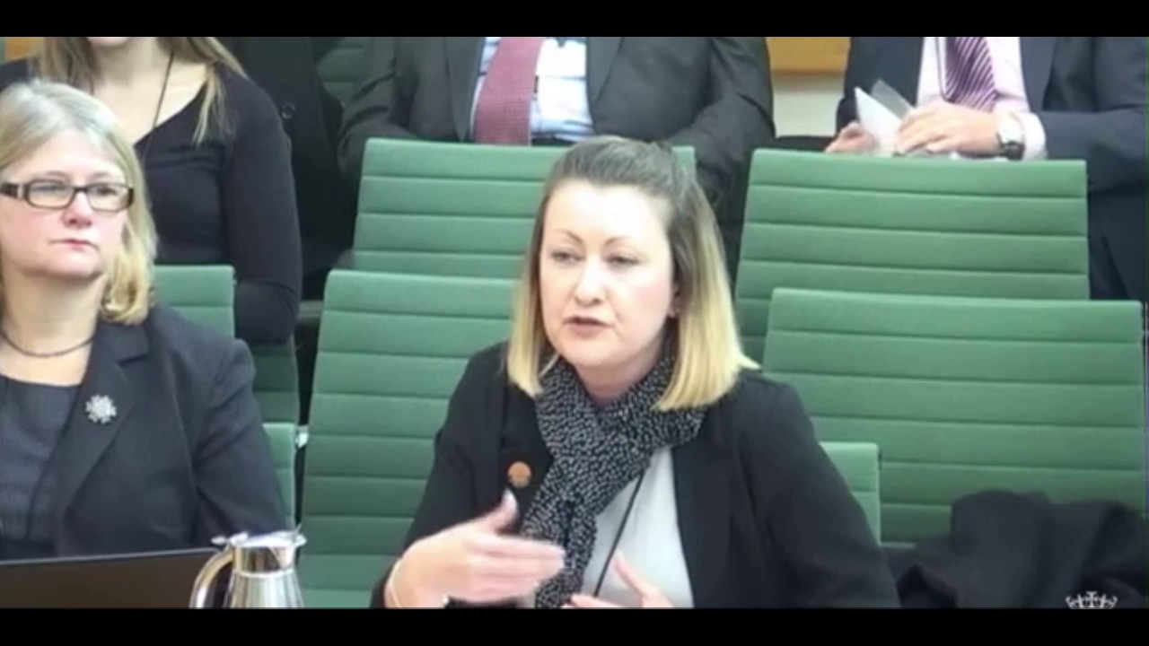 """Foster carers are already professionals"" - GMB's Rachel Harrison's evidence to Education Committee"