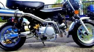 ★キットバイク★新古車?★検索)DAX モンキー エイプ