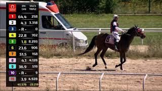 Vidéo de la course PMU PREMIO LUIS ALVAREZ