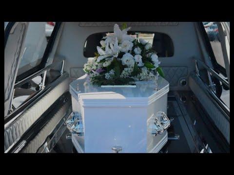 Красавица Началова из могилы побила Децла