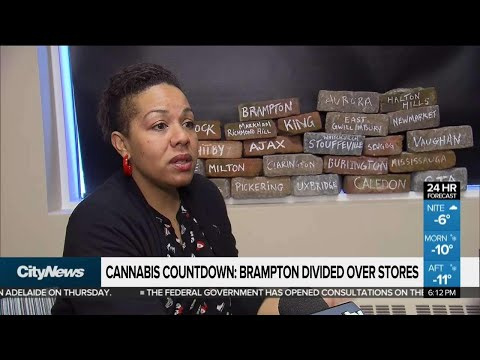 Brampton still divided over weed stores