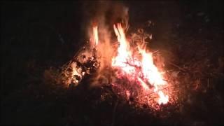 Летний костер. Звуки природы и огня.