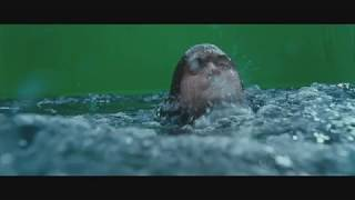 Harry Potter (parte 2) - Detrás de cámaras [CGI]