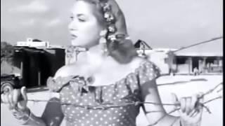 فيلم سلطان فريد شوقى كامل
