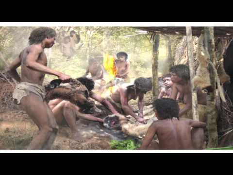 "Jonah Ratsimbazafy, ""Lemur conservation in Madagascar: Good news in bad times"""