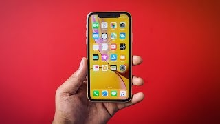 iPhone XR // A Real Review after 30 days!