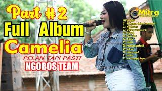 Download FULL ALBUM CAMELIA PELAN TAPI PASTI PART#2 -NGOBOS TEAM KUDUS