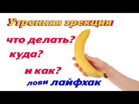 Медицинская энциклопедия Энциклопедия