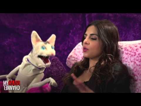 The Love Me Cat   Big Pimpin' with Azita Ghanizada