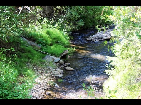 Chapawee Gold 20 acre Placer Mining Claim on Indian Creek in Utah