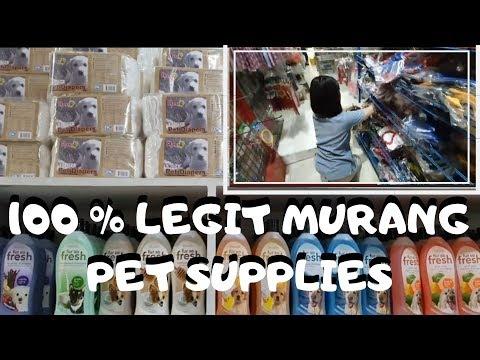 MURANG PET SUPPLIES & ACCESSORIES, 100% LEGIT LAHAT NANDITO NA! WHOLESALE PRICE (VLOG #31)