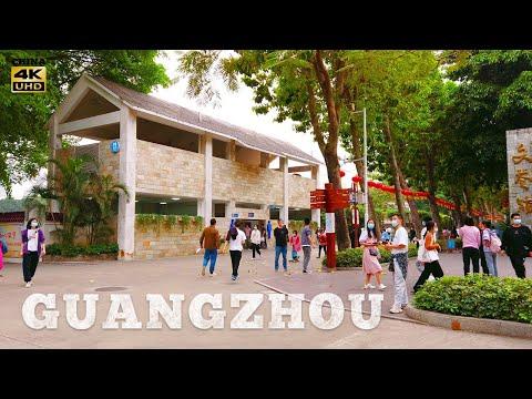 4K Virtual travel   walking tour in Guangzhou Culture Park  广州  徒步旅行