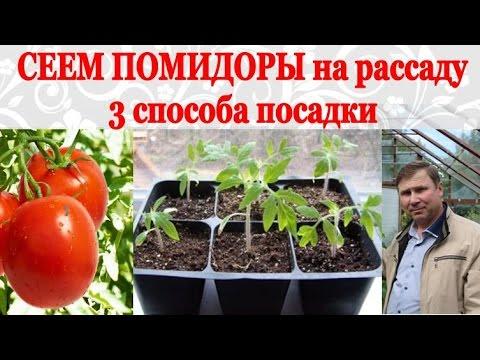Как правильно высаживать помидоры ЧАСТНЫЙ ДОМ. САД