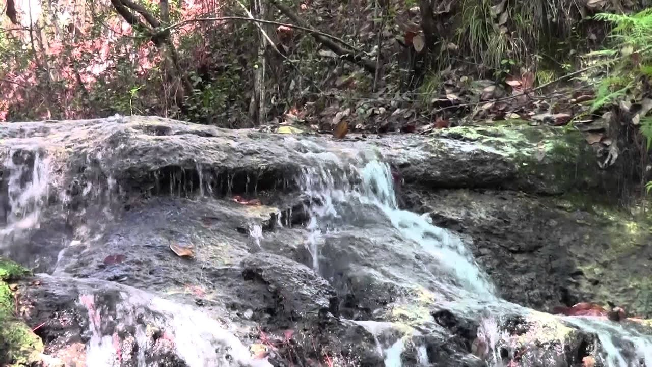 Falling Waters State Park (Chipley, FL) - YouTube