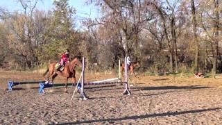 """Фильм """"Кто такой конник?"""" Конный спорт, лошади"""