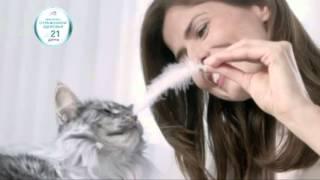 (2016) Purina ONE (корм для кошек) - Любуйтесь отражением здоровья уже через 21 день