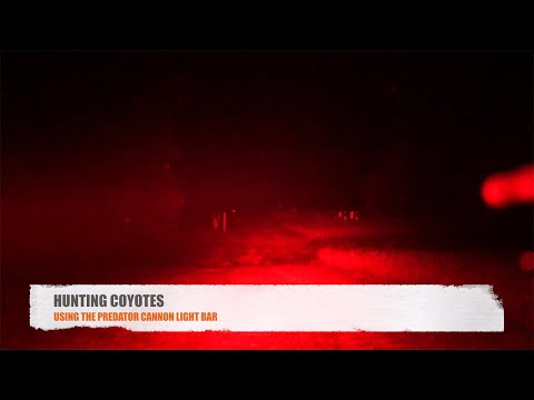 Coyote Hunting at Night with the Predator Cannon Hunting Light by Outrigger Outdoors