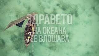 видео: Нашите океани са в беда