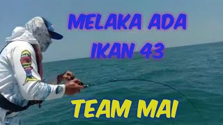 Download Melaka ada ikan 43- team MAI