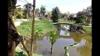 Lembayung Bali, Cinta Panna Yasodhara